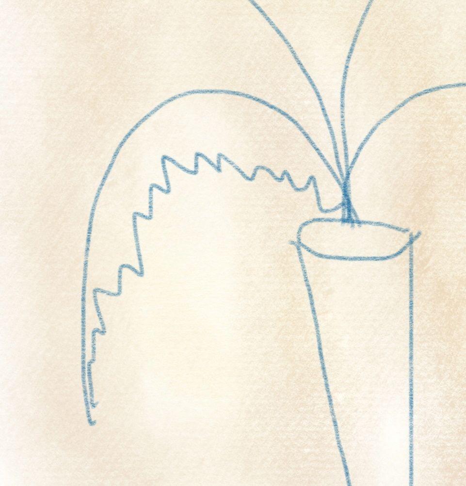 illustration karotte – 05