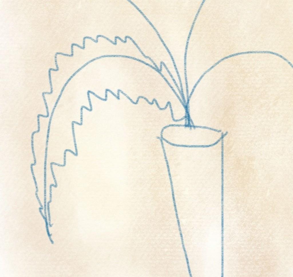 illustration karotte – 06