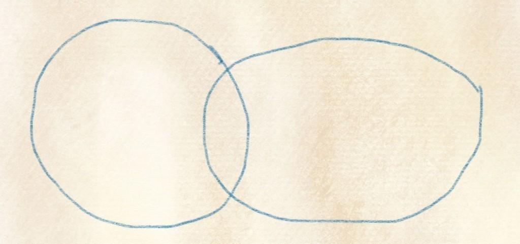 illustration kiwi zeichnen – 02