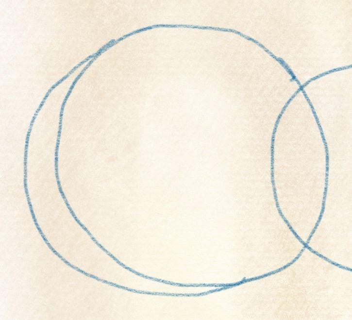 illustration kiwi zeichnen – 03