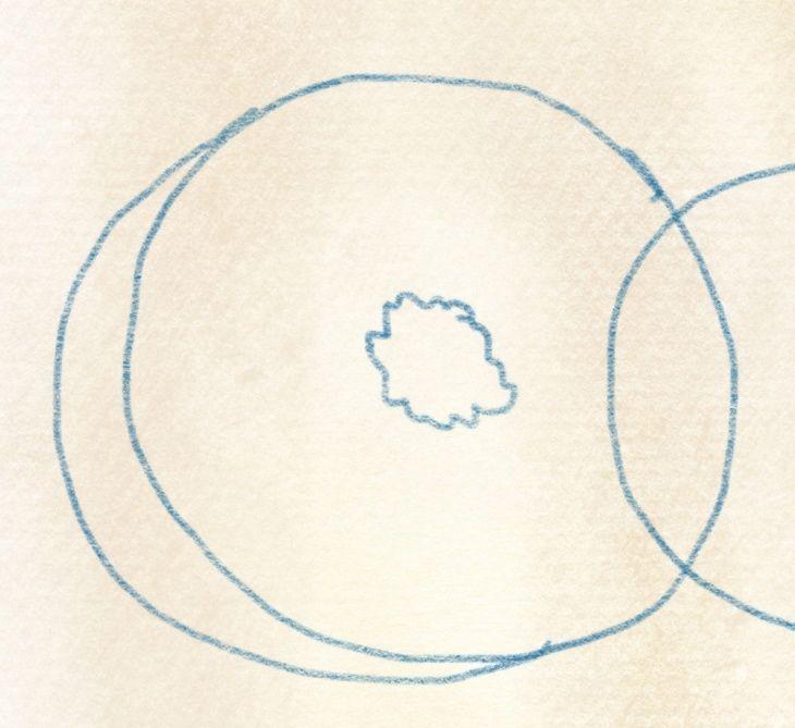 illustration kiwi zeichnen – 04