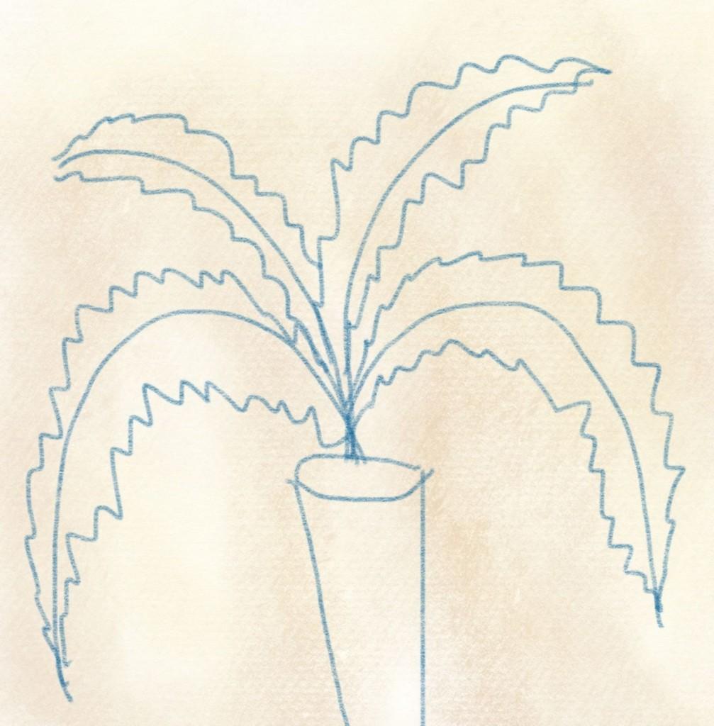 illustration karotte – 07