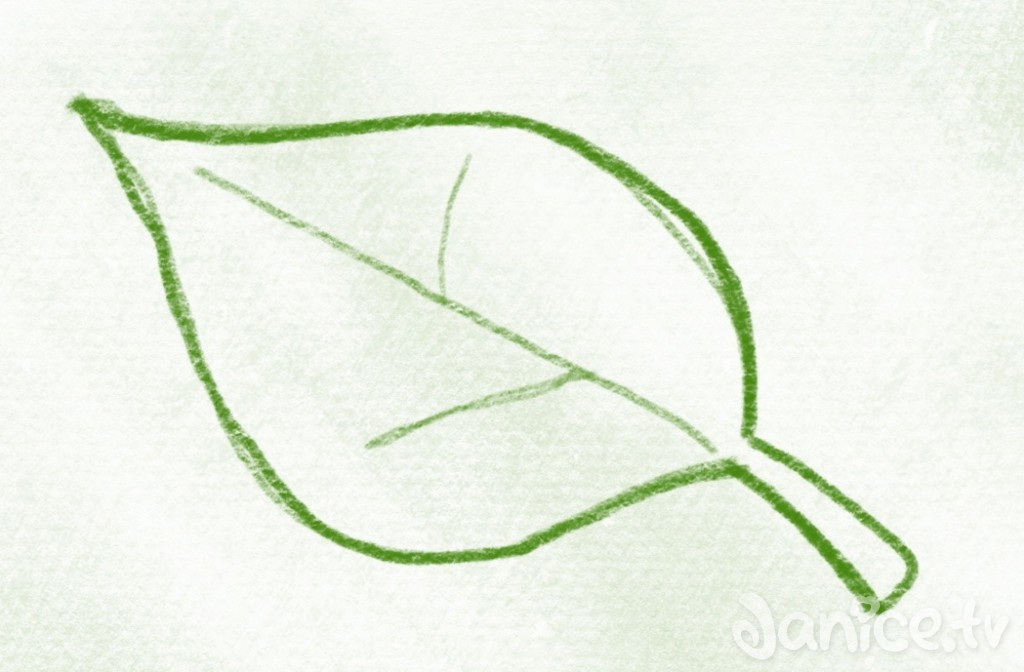kurs_blaetter_gruen – 08