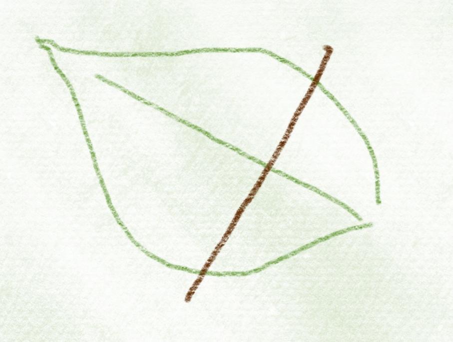 kurs_blaetter_gruen – 03
