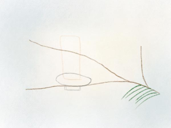 Nadelzweig zeichnen Tannenzweig – 05