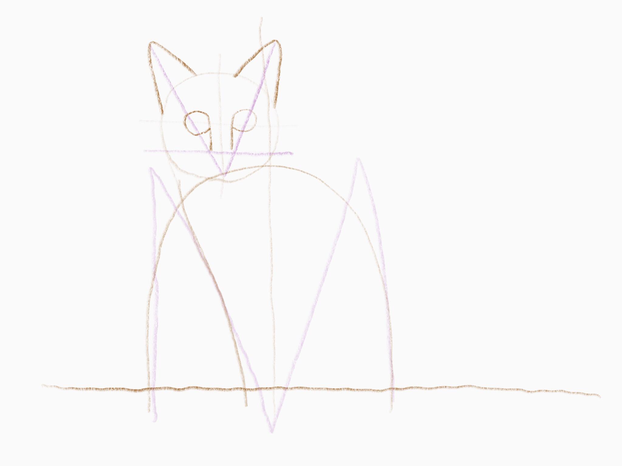 katze zeichnen 11