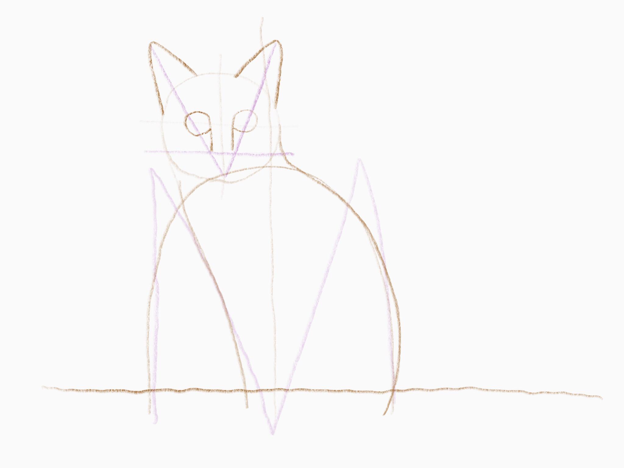katze zeichnen 12