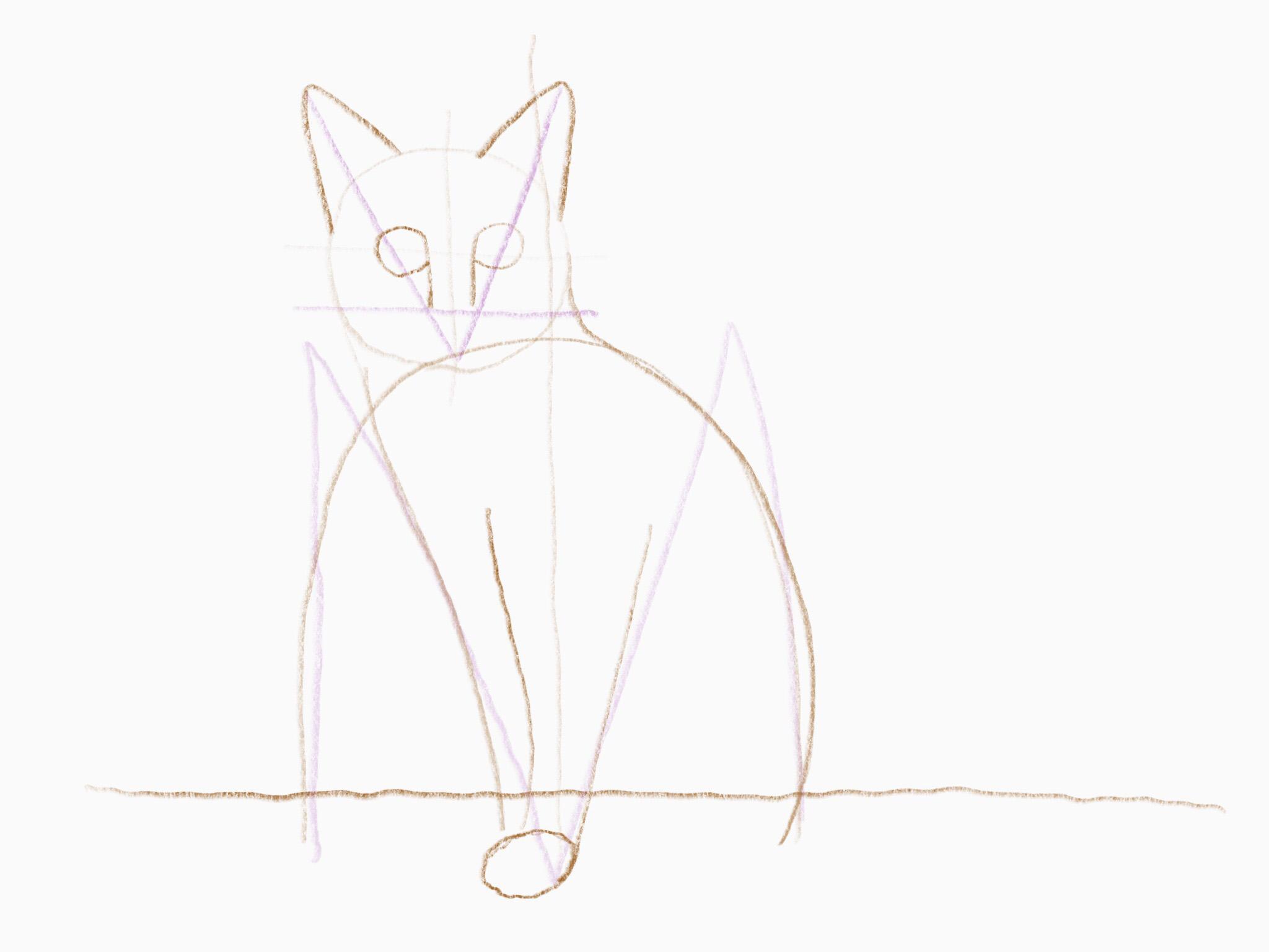 katze zeichnen 13