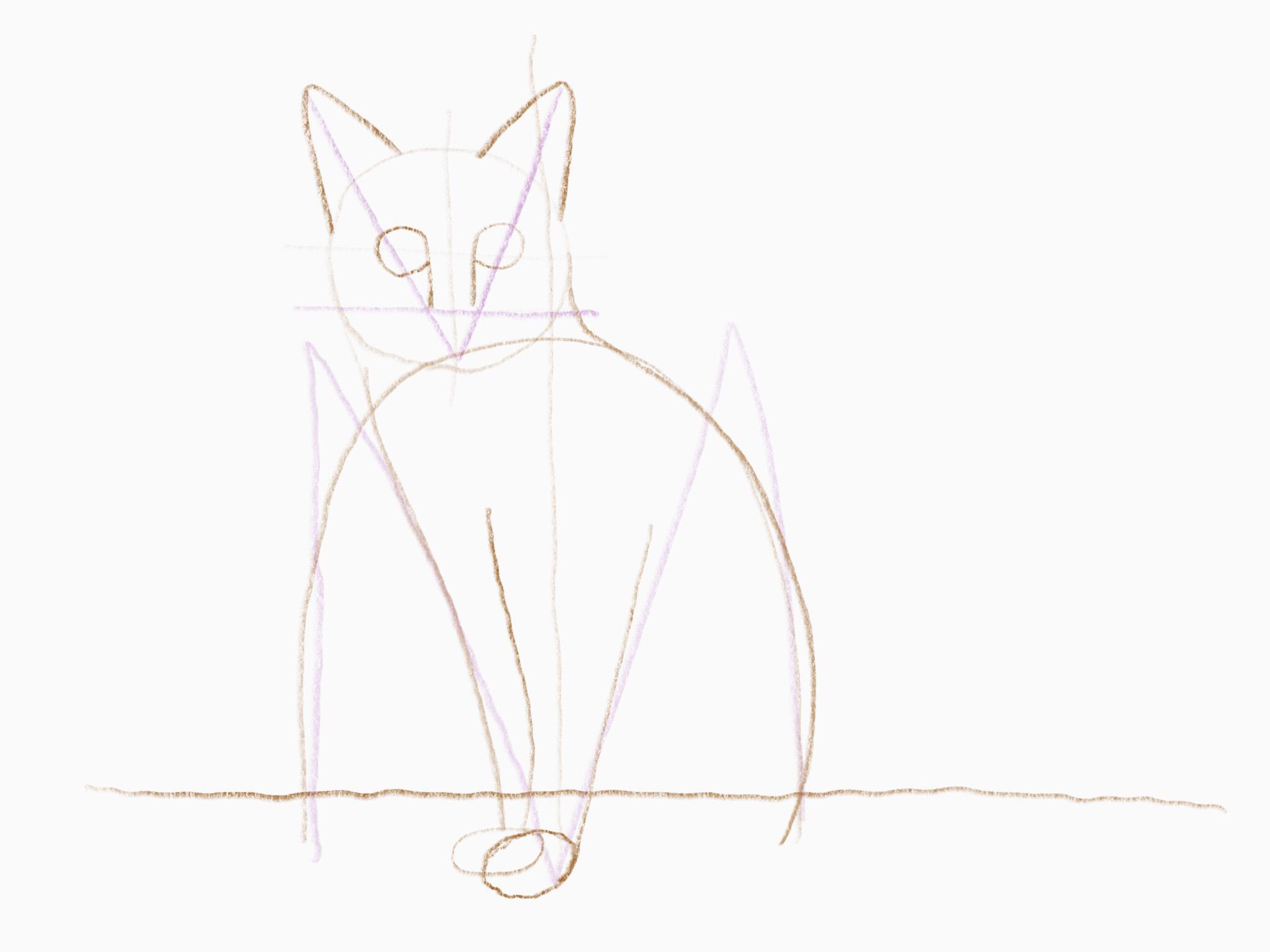 katze zeichnen 14