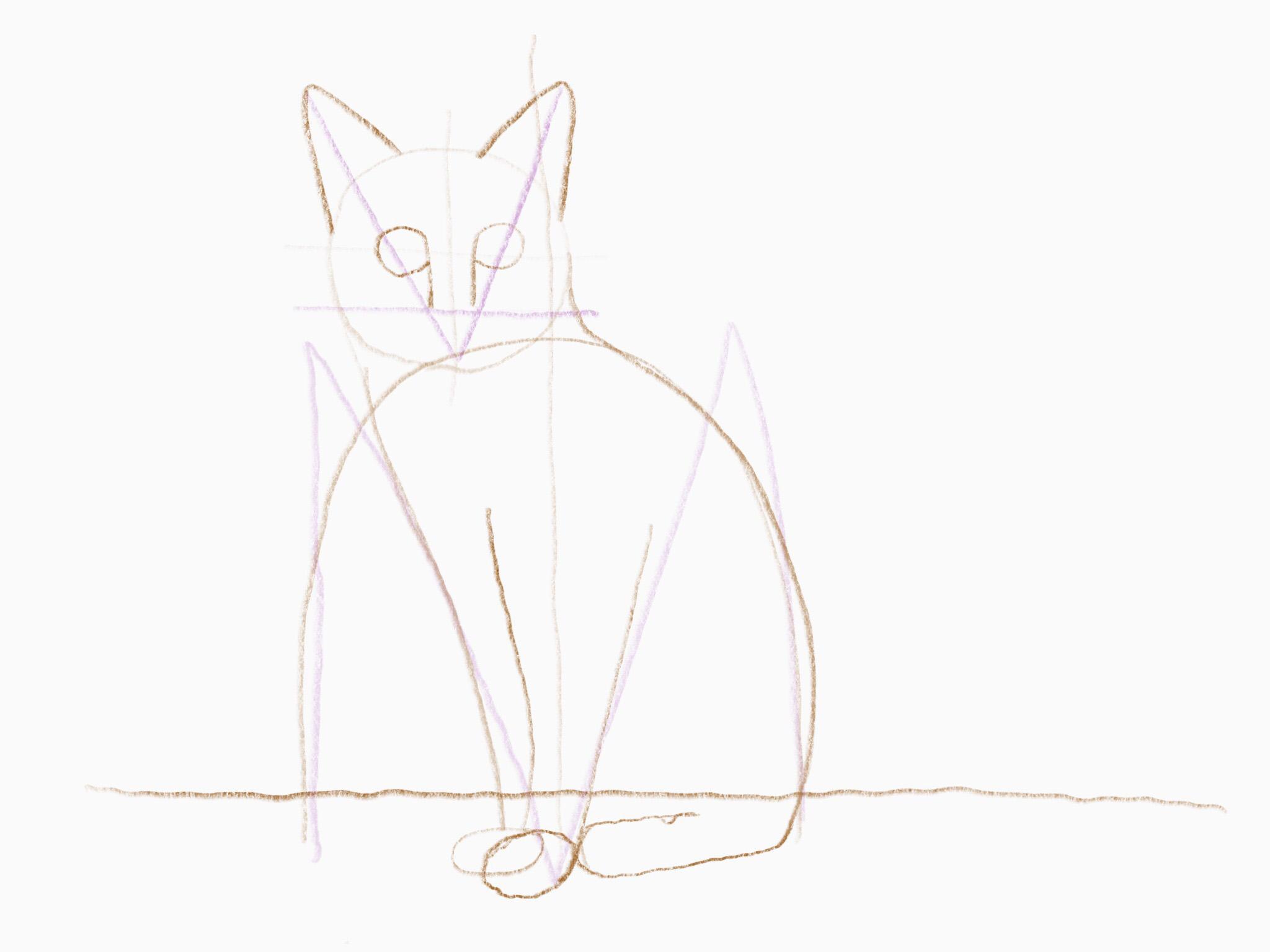 katze zeichnen 15