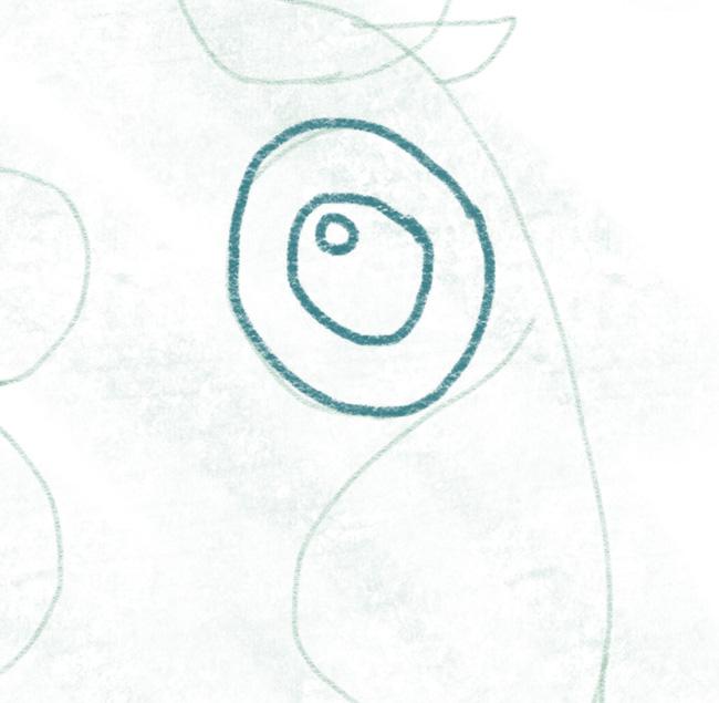 Eule_zeichnen_linkes_auge_reflektion