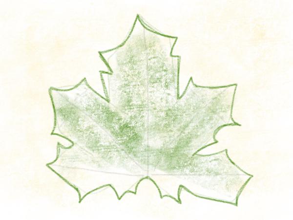 Kastanienblatt zeichnen – 11