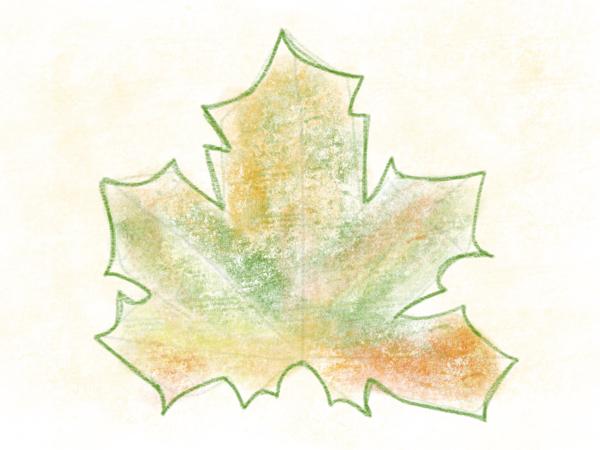 Kastanienblatt zeichnen – 13
