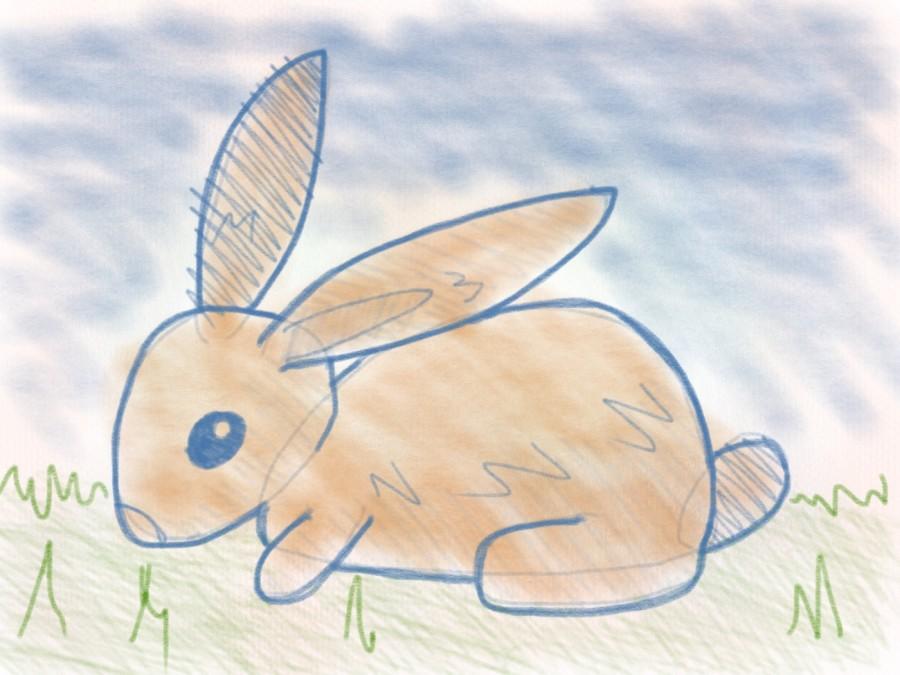 Hase zeichnen leicht gemacht mit flei arbeit for Hase malen